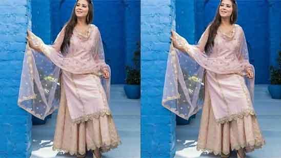 Punjabi Plazo Suit Design 2020