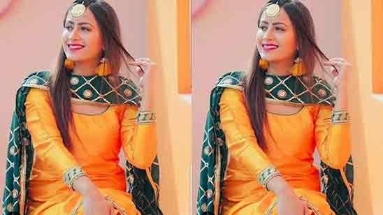 Ladies Party Wear Salwar Suit